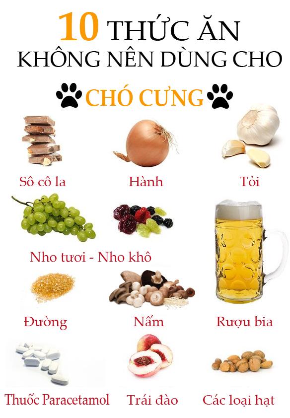 10 loại thức ăn không nên cho chó ăn để bảo vệ chó không bị đi ngoài